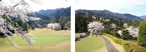小幡郷ゴルフ倶楽部1