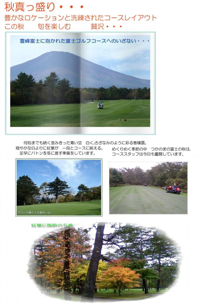 fuji20111101