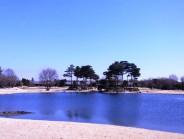 fujigaoka201103315