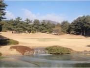 kiryu201101151