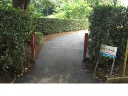 minamitukuba200908072