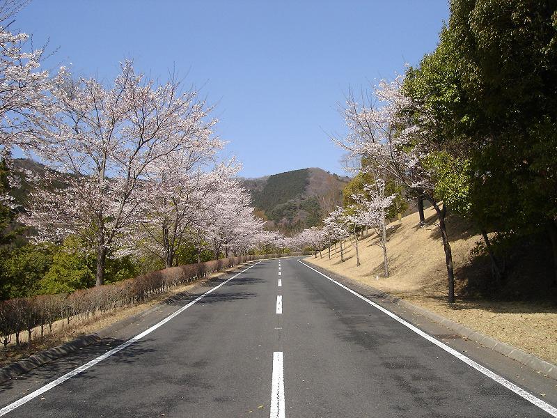 totiginomori201104142