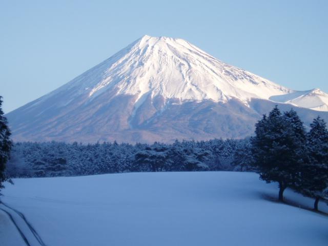 daifuji201102288